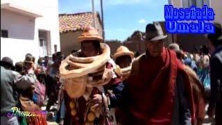 moseñada de provincia Aroma Umala La Paz Bolivia