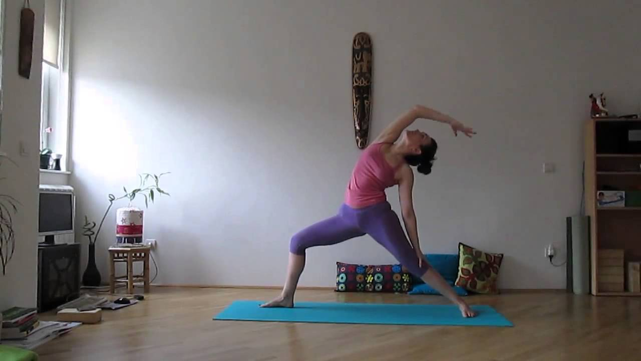 vinyasa yoga flow jelena february 2013 youtube