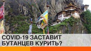 Из за коронавируса в Бутане сняли запрет на сигареты ICTV