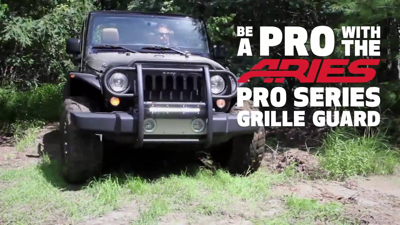 Captivating Spotlight: Aries Pro Series Grille Guard