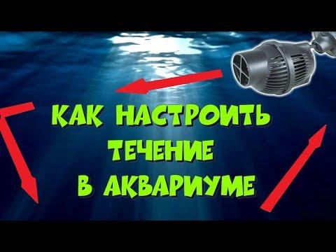 Как правильно настроить течение в аквариуме. Ч.1