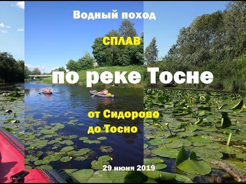 Сплав по реке Тосне [июнь 2019]