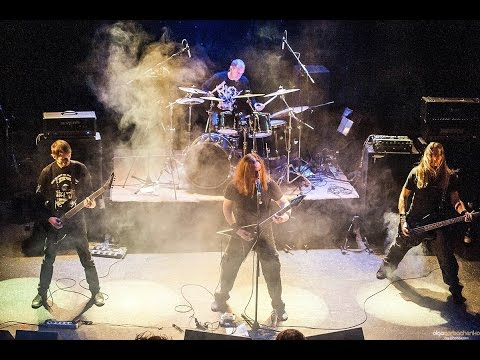 INFECTED - BrownTormentor (MonteRay Live Stage)