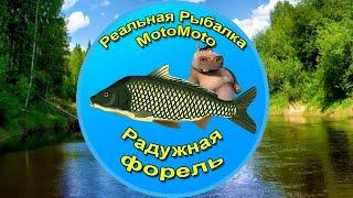 Как поймать Радужную форель на Лесной реке NEW Реальная Рыбалка