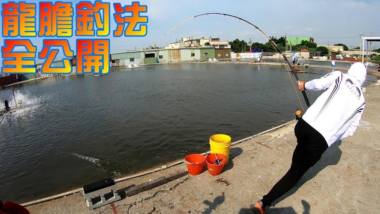 龍膽石斑跳線釣法全公開!那個釣具店老闆全教你!麗水海釣場大斑C池 Fishing in Taiwan 臺灣の釣り - YouTube