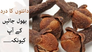 Clove Remedy for Toothache | Tooth Infection Treatment |