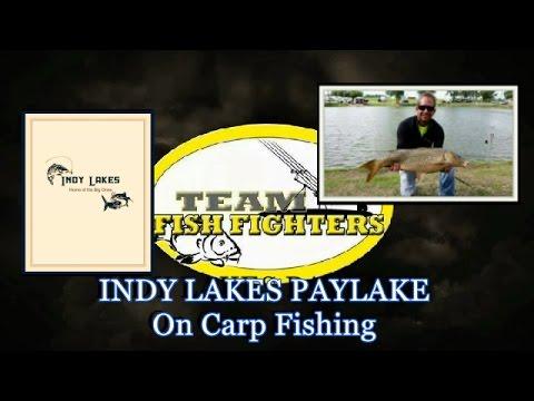 INDY LAKES. On Carp Fishing