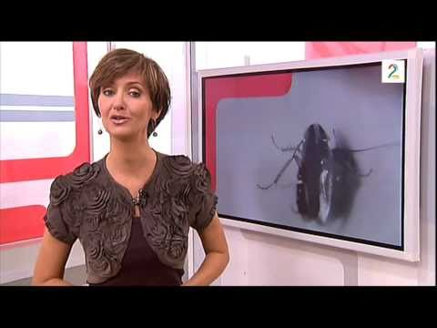 pelias.no - TV 2 Norge - TV 2 hjelper deg