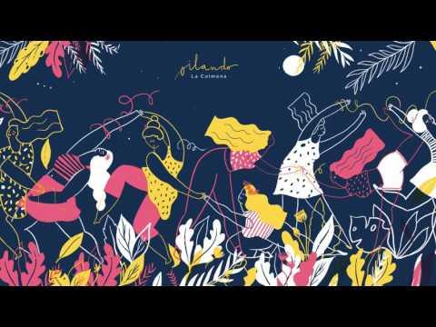 La Colmena • Oilando • - Flor de Murga