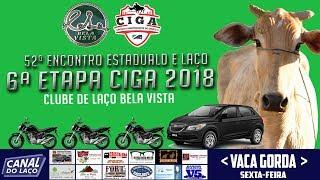AO VIVO 52ª Encontro Estadual de Clubes de Laço - Clube de Laço Bela Vista thumbnail
