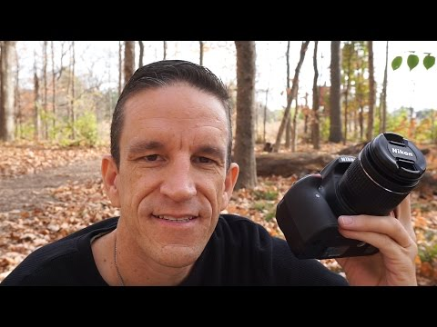 Nikon D3400 - Field Test and Review