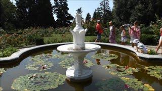 видео Никитский ботанический сад