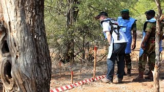 Double stretch: The journey to clearing Zimbabwe's landmines