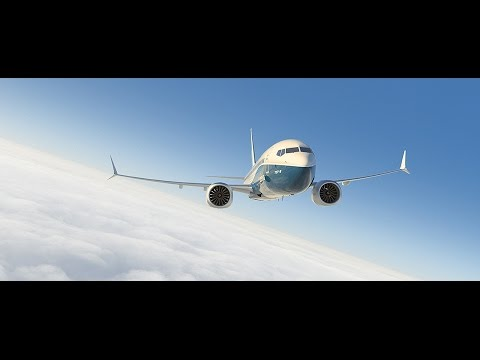 Boeing 737 MAX Song ✈