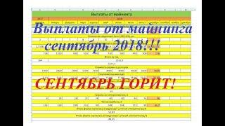 Выплаты от майнинга с фермы 9 х 1060 6Гб СЕНТЯБРЬ 2018.