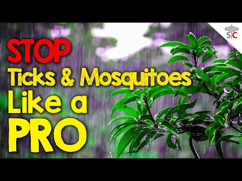 How to Spray Your Yard for Ticks Mosquitoes & Other Pests