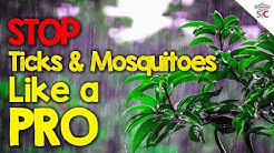 Mosquito & Tick Control Yard Spraying - 1 Step - Best Defense for DIY EEE & Lyme