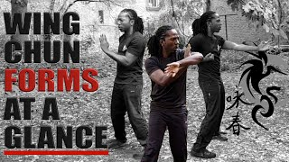 Wing Chun forms at a glance