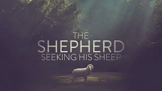 Pastor Mike Wells: The Shepherd Seeking His Sheep