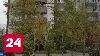 Смотреть видео Синоптики рассказали, когда в Москве выпадет первый снег - Россия 24 онлайн