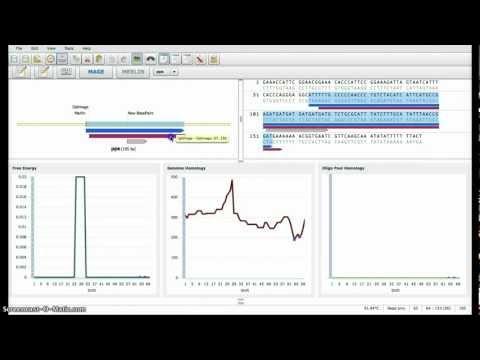 Merlin: a software framework for MAGE