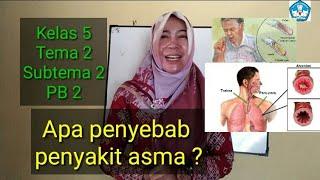Mungkin sebagian besar dari Anda pernah menderita Asma sewaktu kecil. Banyak mitos yang mengatakan b.