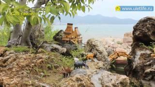 видео Достопримечательности Нячанга. Вьетнам.