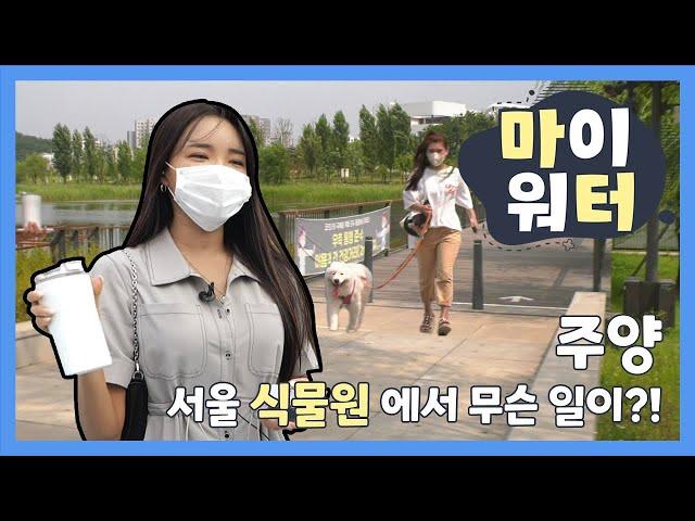 [2021 마이워터] 주양 서울식물원에서 무슨일이?