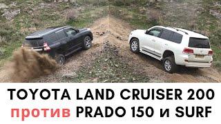 2019 Toyota Land Cruiser 200 vs Land Cruiser Prado 150  Hilux Surf
