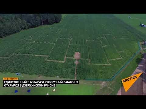 Кукополис- единственный кукурузный