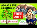 FREE WILL:  Object lesson for kids (Adam & Eve) CHILDREN'S MINISTRY IDEAS
