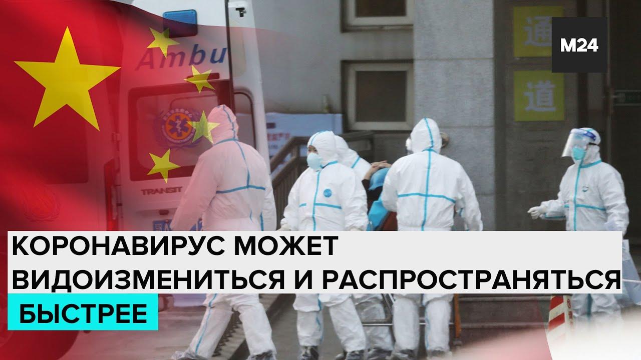 Коронавирус, выявленный в Китае, может видоизмениться и распространяться быстрее - Москва 24