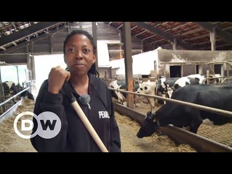 What a Cameroonian learned in Germany   DW English
