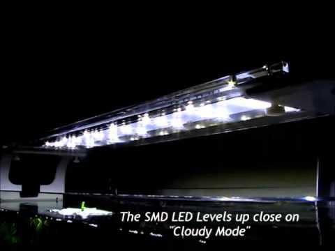 zetlight aquarium led light qmaven funnydog tv. Black Bedroom Furniture Sets. Home Design Ideas