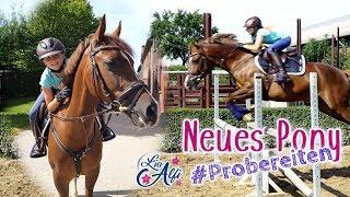 Lia & Alfi - Pony Probereiten - Rocketman - FMA