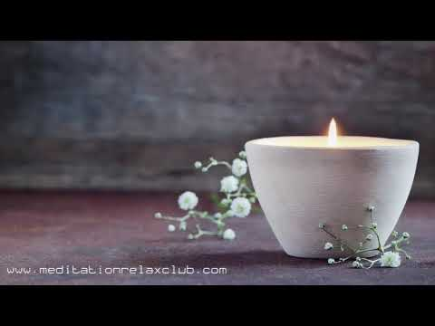 Serenity Spa: Total Relaxation, Natural Forest, Relax Music with Natural Sounds