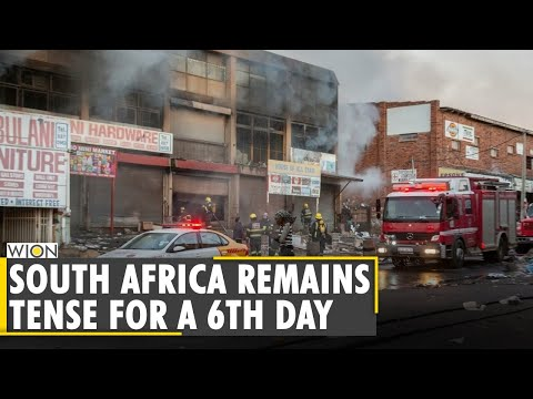 South Africa Unrest: Food & fuel supplies running short  Latest World English News   WION News
