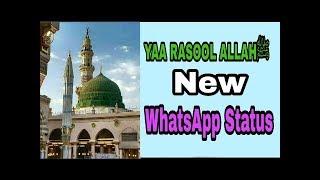 YAA RASOOL ALLAHﷺ WhatsApp New Status Naat   Eid E Milad Un Nabi New Status Naat   Islami Status New