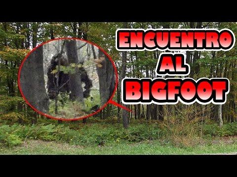 Encuentro al BIGFOOT | 100% Real No fake 1 link mega Libre de virus |