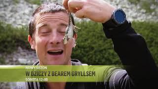 W dziczy z Bearem Gryllsem - nowy sezon w sobotę o 12:00!