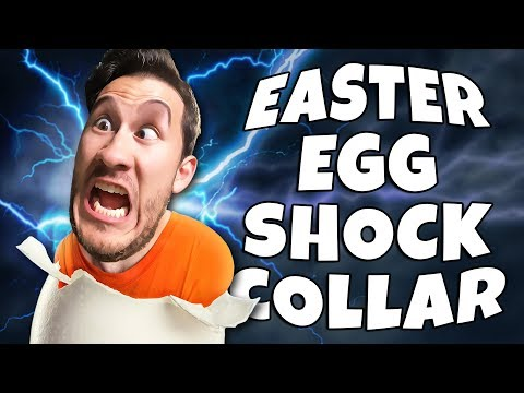 Easter Egg Hunt with a SHOCK COLLAR!!