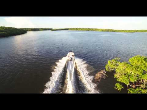 Sunrise In The Everglades: DJI INSPIRE1 4k DRONE FOOTAGE