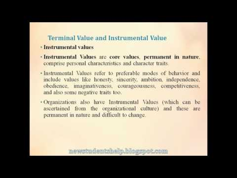 Types of Values. Terminal and Instrumental Values.