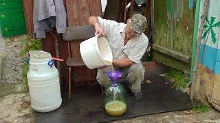 Как сделать белое вино из винограда. Сусло из мезги. Вино Фердинанд (2)
