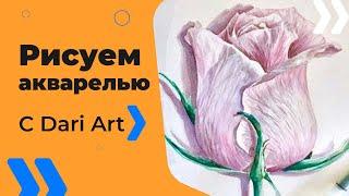 Подробный видео урок по акварели для начинающих! Рисуем розу! #Dari_Art