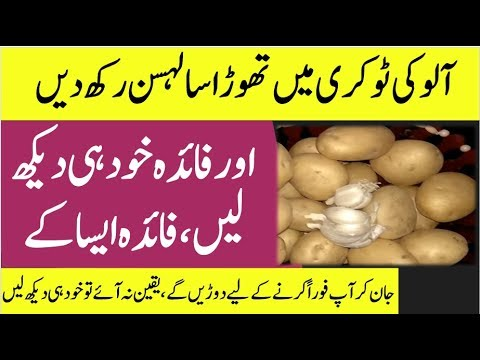 How to Store Potatoes | How to store Potatoes long term | Potato Storage After Harvest-Qurani Wazaif
