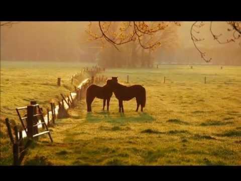 Gandalf - Mystical Morning (New Age Music)