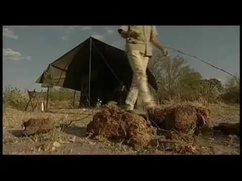 Mobile Expeditions Botswana - Uncharted Africa Safari