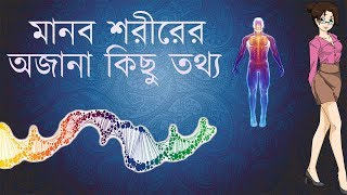 Human Body Facts In Bengali//Amazing Facts//Facts About Human Body In Bengali