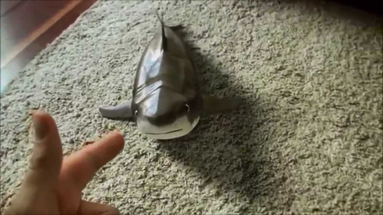 Shark Toy Again Real Or Not Youtube